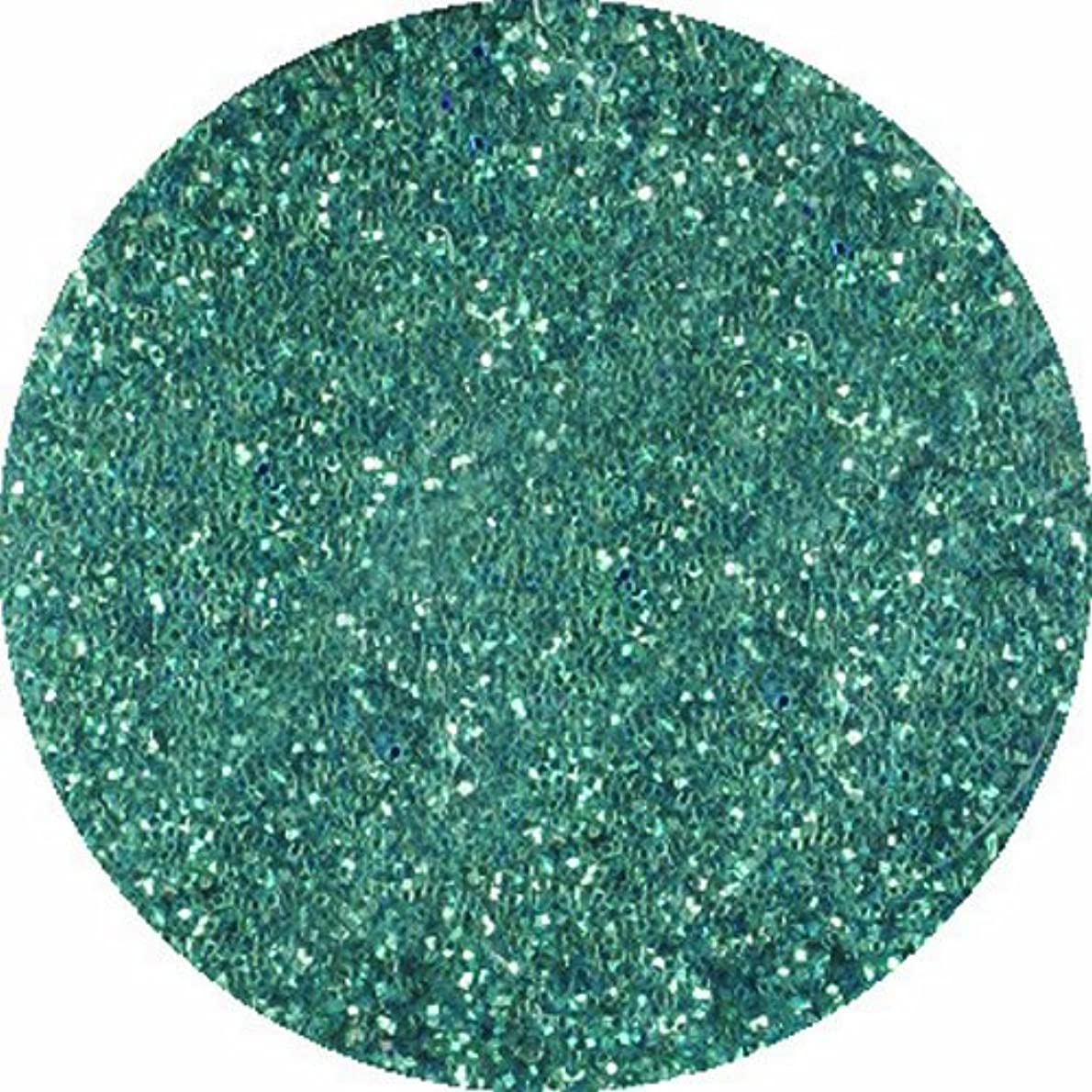 著名な酸化物処方するビューティーネイラー ネイル用パウダー 黒崎えり子 ジュエリーコレクション ライトブルー0.05mm