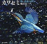 カワセミ—青い鳥見つけた (日本の野鳥)