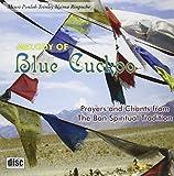 Melody of Blue Cuckoo