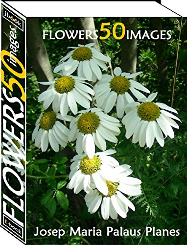 Flowers (50 images) (English Edition)