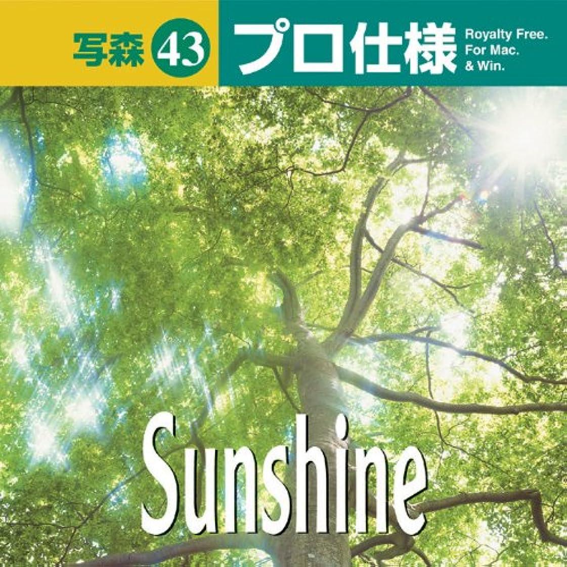 減るシェーバー同級生写森プロ仕様 Vol.43 Sunshine