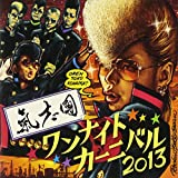 One Night Carnival 2013 (CD+DVD)/