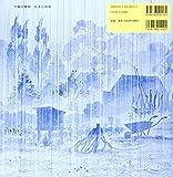 雨、あめ (児童図書館・絵本の部屋) 画像