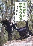 米が育てたオオクワガタ (イワサキ・ノンフィクション) 画像