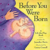 Before You Were Born: A Lift-The-Flap Book