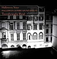Halloween Zombie Sound Effects by Halloween Voice