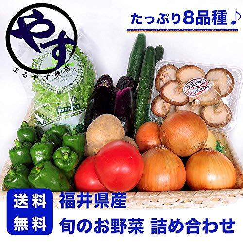 福井県産 旬のお野菜 8品種詰め合わせ