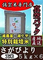 真空パック  特別栽培米 佐賀県産 さがびより 玄米 30kg(5kg×6) 平成29年産