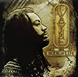 Book Of Life [12 inch Analog]