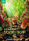 小さな世界はワンダーランド/劇場版 [DVD] 画像