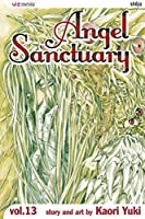 Angel Sanctuary vol.13 (Angel Sanctuary)