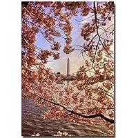 Trademark Fine Art 桜の木 ワシントンモニュメント by Lois Bryan キャンバス ウォールアート 22 by 32-Inch LBr092-C2232GG