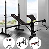BLACK LORD Muti-Station Home Gym Fitness Abdominal Strength Training Equipment Adjustable Bench Military Press Workouts