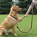 大型犬用 革ハーフチョーク 首輪&リードセット (茶色)