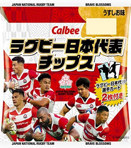 カルビー ラグビー日本代表ポテトチップス2019 22g ×24袋