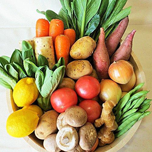 有機JAS認定野菜のバーベキューセット6品 じゃがいも・玉ねぎ・人参・ピーマン・ミニトマト・生しいたけ  (同梱OK) [その他]
