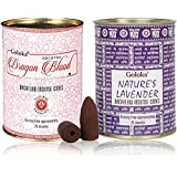 Backflow Incense Cones by GOLOKA - Pack of 2 Includes 48 Cones (Dragons Blood & Natures Lavender)