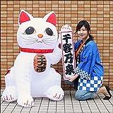 お正月装飾 ジャンボエアブロー 招き猫 Mサイズ 125m / ディスプレイ 飾り   4480