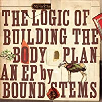 The Logic of Buildng the Body Plan