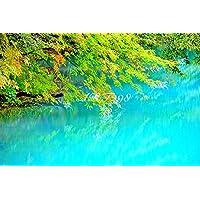 風景写真ポスター 福島 裏磐梯五色沼02 自然の美しさを最高級の素材とこだわりのプリントで再現しました。 (A2:59.4×42.0cm)