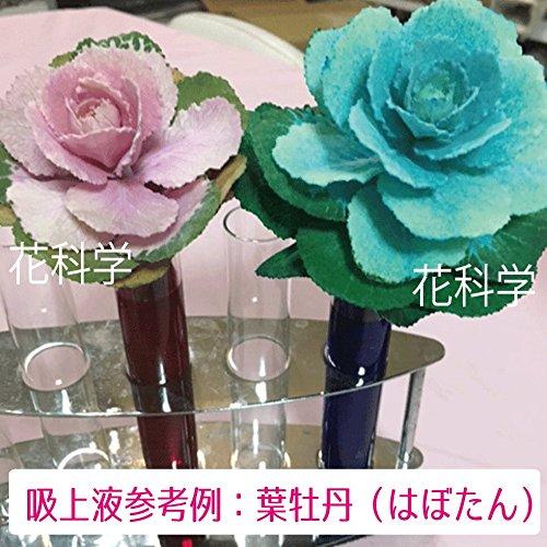 プリザーブドフラワー吸上げ液 【葉物(リーフ)・小花専用】 SF-M液 200ml (緑)