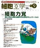 細胞工学 12年9月号 31ー9 特集:細胞力覚
