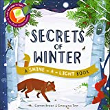 Secrets of Winter Secrets (A Shine-A-Light Book )