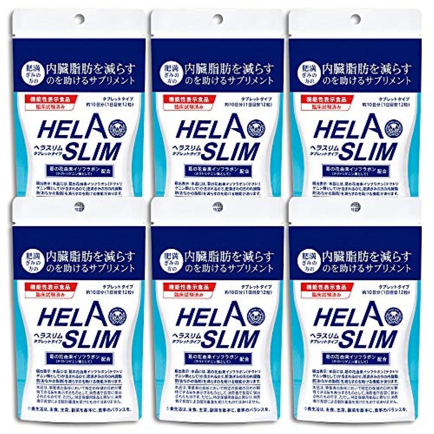 調整可能発火する【6袋セット】HELASLIM(120粒入り)アルミパック