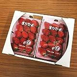 和歌山 オリジナル いちご 苺 まりひめ 2パック