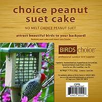 Birds Choice CPS12 Choice Peanut Suet Cakes Case of 12