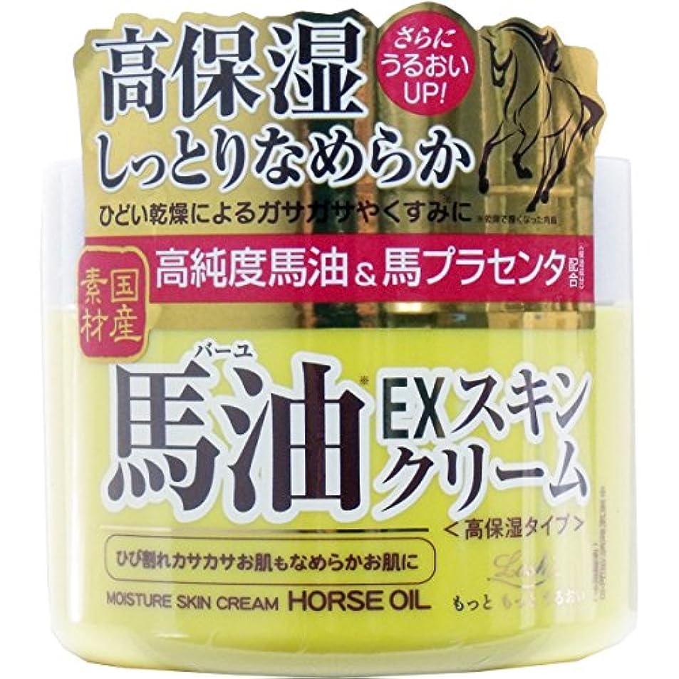 肌寒い責めお香ロッシモイストエイド EXスキンクリームBA 100g【6個入りセット】