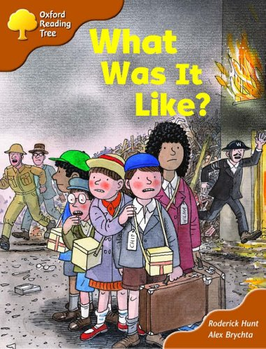 Oxford Reading Tree: Stage 8: More Storybooks (Magic Key): What Was It Like?の詳細を見る