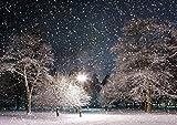 【A3サイズミニポスター】 雪降る公園 POSA3-051 (42.0×29.7cm)