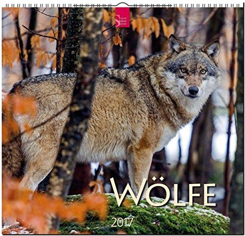 Woelfe 2017: Mittelformat-Kalender