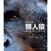 ビジュアル 類人猿