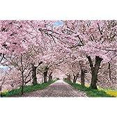 2016ベリースモールピース パズルの超達人 桜に染まる権現堂堤-埼玉 (50x75cm)