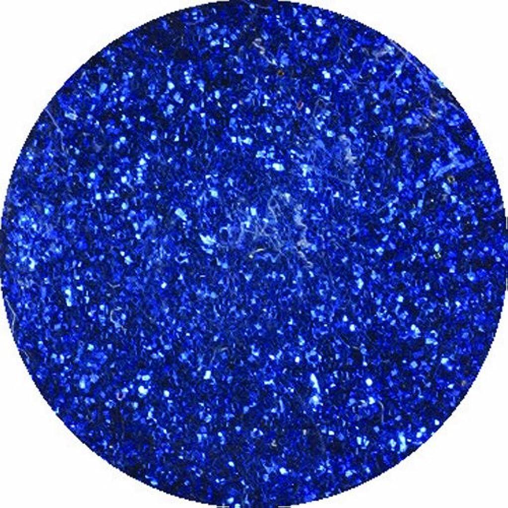 容器些細な複雑でないビューティーネイラー ネイル用パウダー 黒崎えり子 ジュエリーコレクション ブルー0.05mm