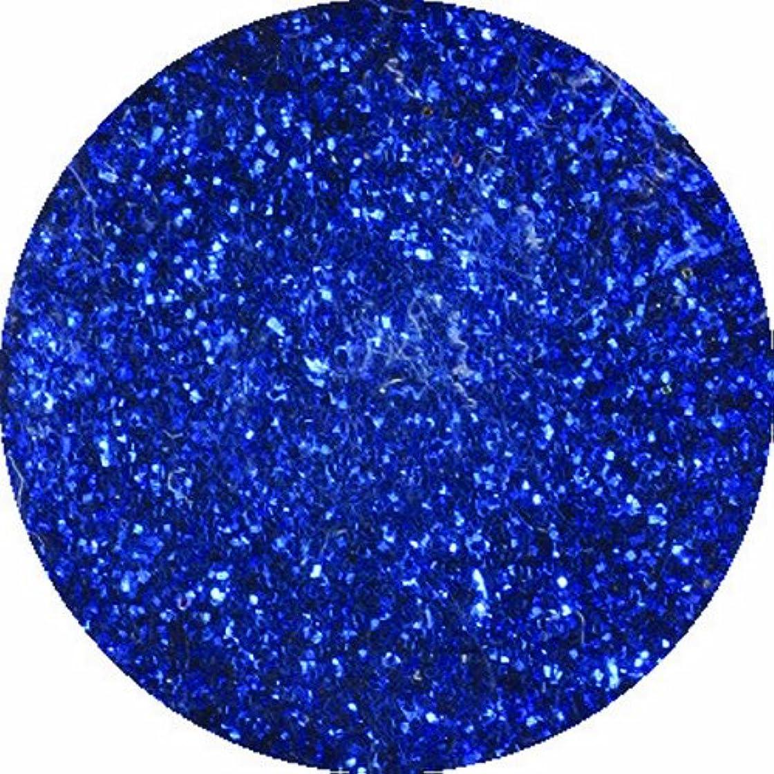 発音するフレッシュジャーナルビューティーネイラー ネイル用パウダー 黒崎えり子 ジュエリーコレクション ブルー0.05mm