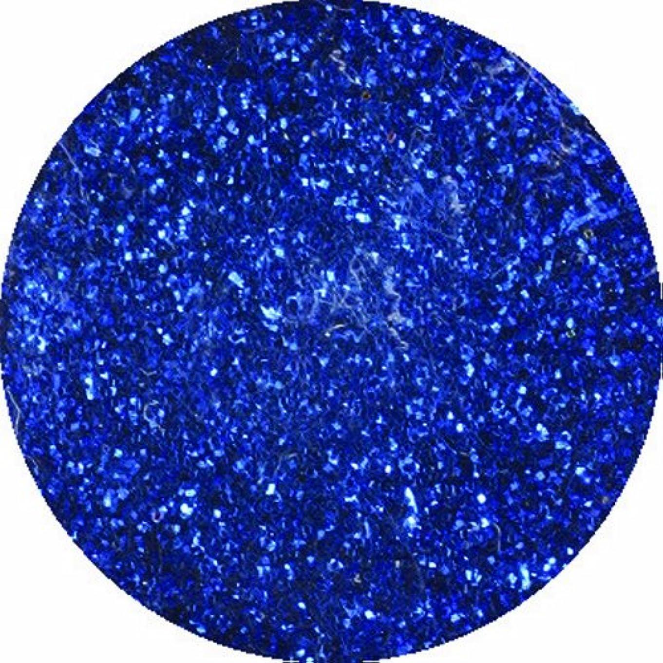 汚す聖なる感度ビューティーネイラー ネイル用パウダー 黒崎えり子 ジュエリーコレクション ブルー0.05mm