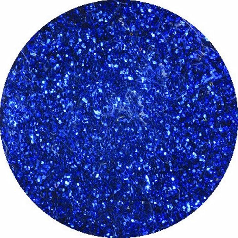 宗教的な思慮深いハロウィンビューティーネイラー ネイル用パウダー 黒崎えり子 ジュエリーコレクション ブルー0.05mm