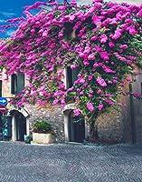 A Monamour 5x 7ftファブリックビニールフローラル写真背景写真ブースBackdrop