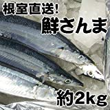 根室産とろサンマ(約2kg 14~16尾)お刺身にできる!北海道産生さんまを水氷でお届けします。の商品画像