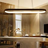 Modern LED Pendant Lights, Metal Island Hanging Lamp for Dining Table, Pendant Lamps Ceiling Lighting for Dining Room, Living