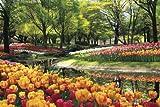 2016ピース ジグソーパズル パズルの超達人 チューリップ咲く公園-東京- ベリースモールピース(50x75cm)