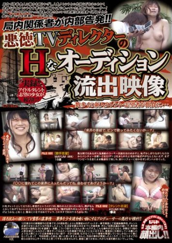 悪徳TVディレクターのHなオーディション流出映像 [DVD]