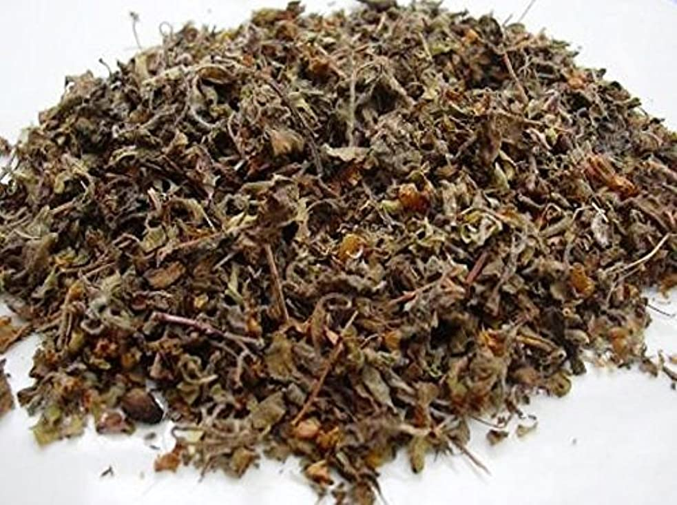 巨大然とした乗算Organic Dried Tulsi Leaves(Holy Basil) (100gm/3.53oz)