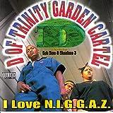 I Love N.I.G.G.A.Z. [Explicit]