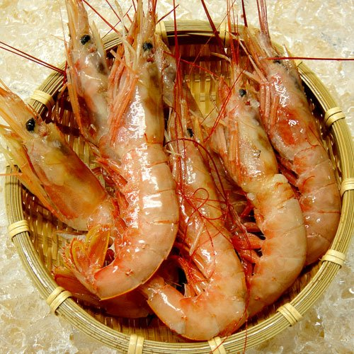 赤海老 アルゼンチンエビ 大容量パック ボイル済み 天然 赤エビ 約2kg