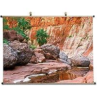Canyon in Baja、メキシコ – キャンバス壁スクロールポスター24 x 16インチ