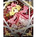 ローゼンメイデン 6 [2013年7月番組](初回特典:メタルブックマーカー『雪華綺晶』) [DVD]